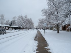 Matt's street - with Snow!