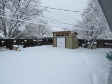 Matt's backyard - with snow!